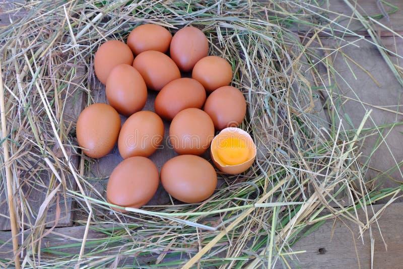 Uova del pollo in nido di paglia su vecchio fondo di legno fotografia stock