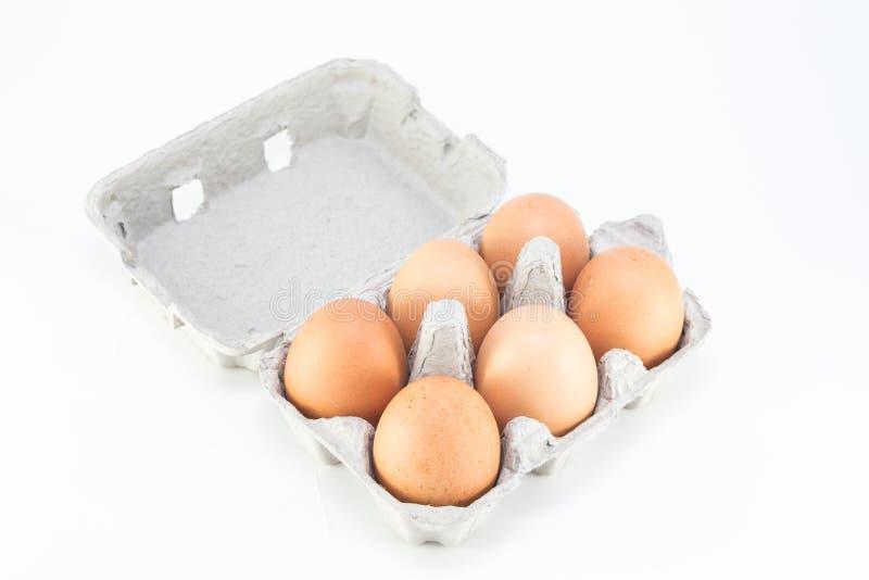 Uova di addominali scolpiti fotografia stock libera da diritti