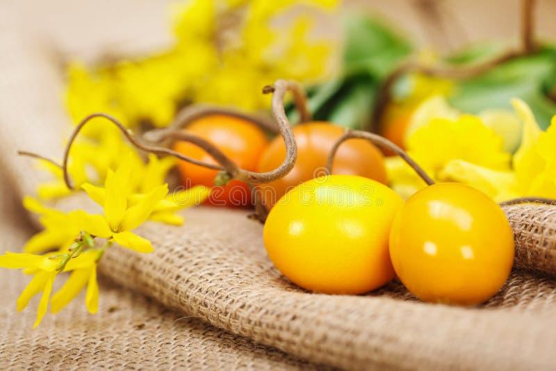 Uova di Pasqua gialle immagine stock libera da diritti