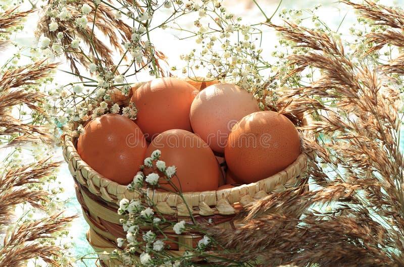 Uova di Pasqua naturali in un canestro su una tavola con i fiori selvaggi e l'erba della molla, preparanti per la festa di Pasqua fotografia stock libera da diritti