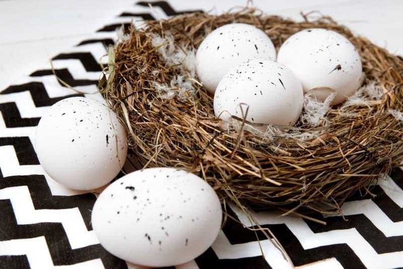 Uova di Pasqua nel nido su fondo bianco Fine in su fotografie stock