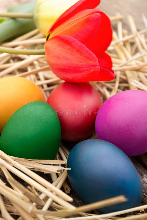 Uova di Pasqua sulle paglie fotografia stock libera da diritti