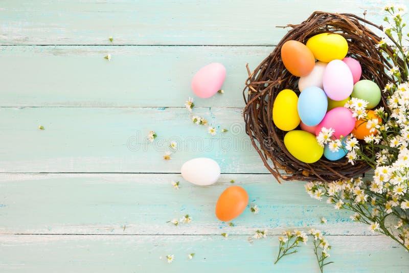 Uova di Pasqua variopinte in nido con il fiore sul fondo di legno rustico delle plance in pittura blu Festa nella stagione primav immagini stock libere da diritti
