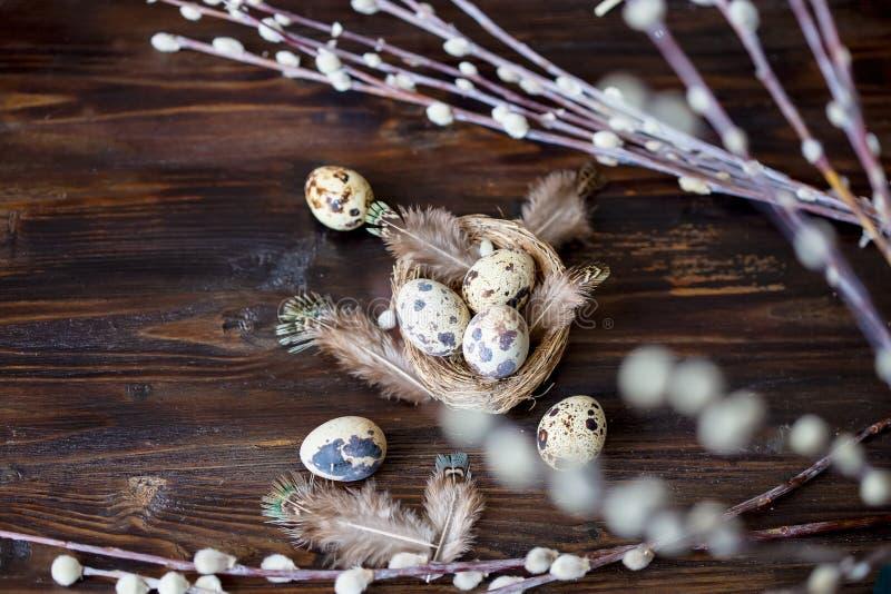 Uova di quaglia, piume, rami del salice su una tavola di legno Effetto d'annata fotografia stock libera da diritti