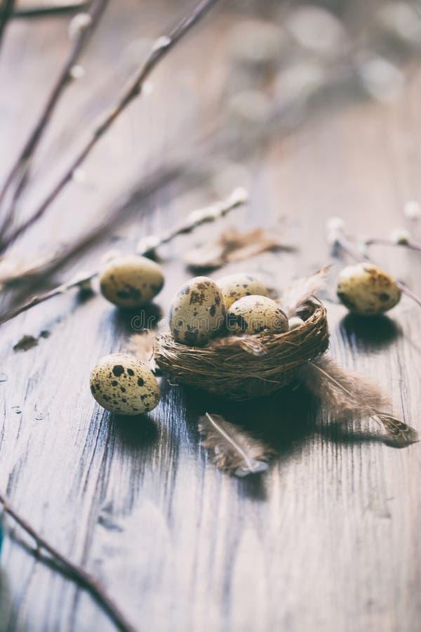 Uova di quaglia, piume, rami del salice su una tavola di legno Effetto d'annata immagini stock libere da diritti
