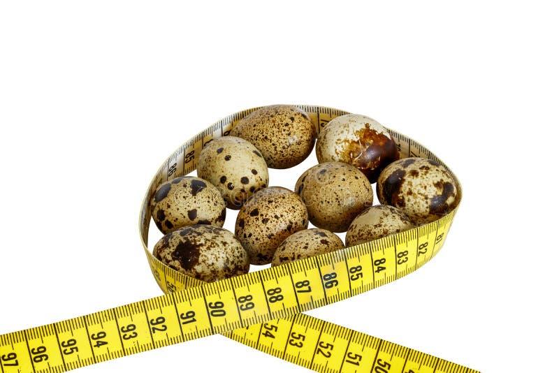 Uova di quaglia sane su fondo bianco immagine stock