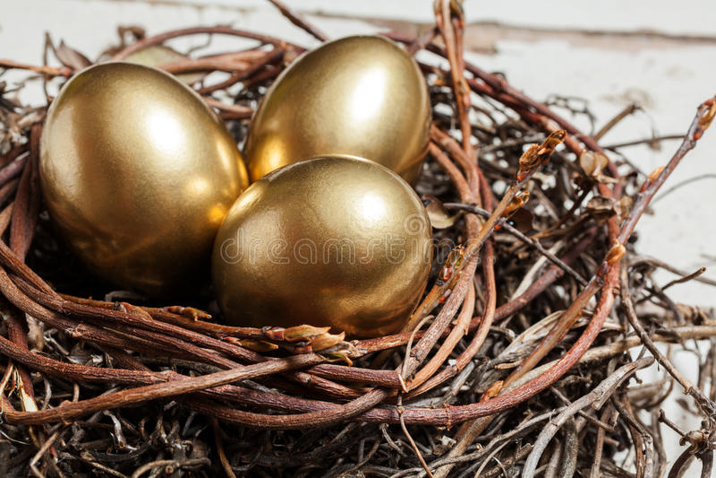 Uova dorate in nido immagini stock