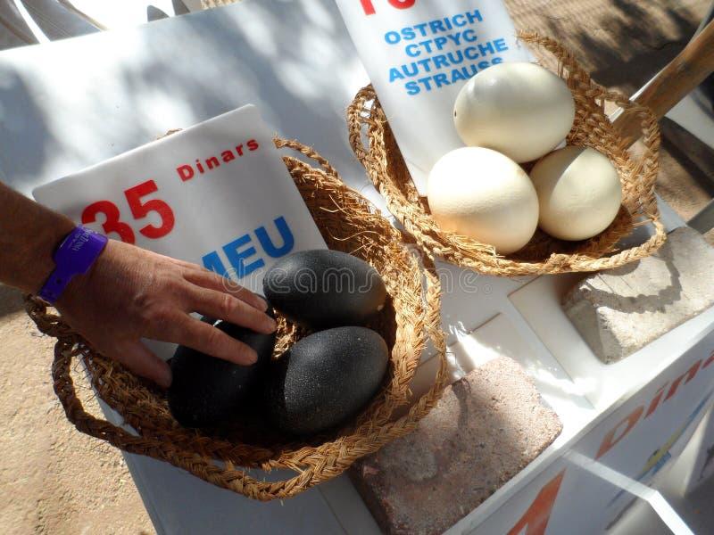 Uova fresche dell'emù e dello struzzo da vendere immagini stock