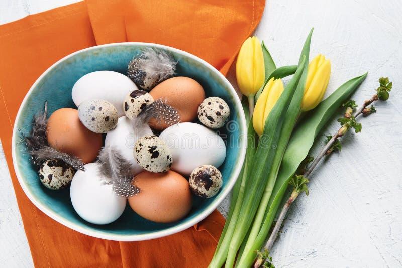 Uova fresche di quaglia e del pollo fotografie stock libere da diritti