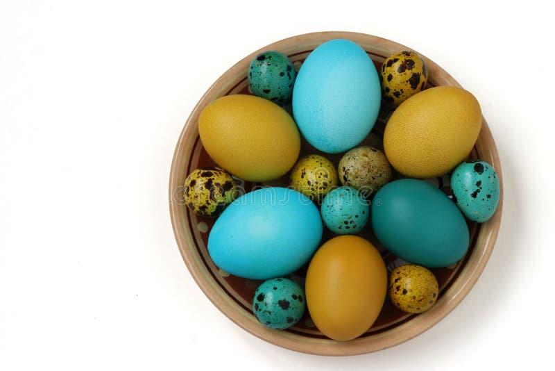 Uova gialle e blu di quaglia e del pollo per Pasqua, concetto di festa della primavera fotografia stock