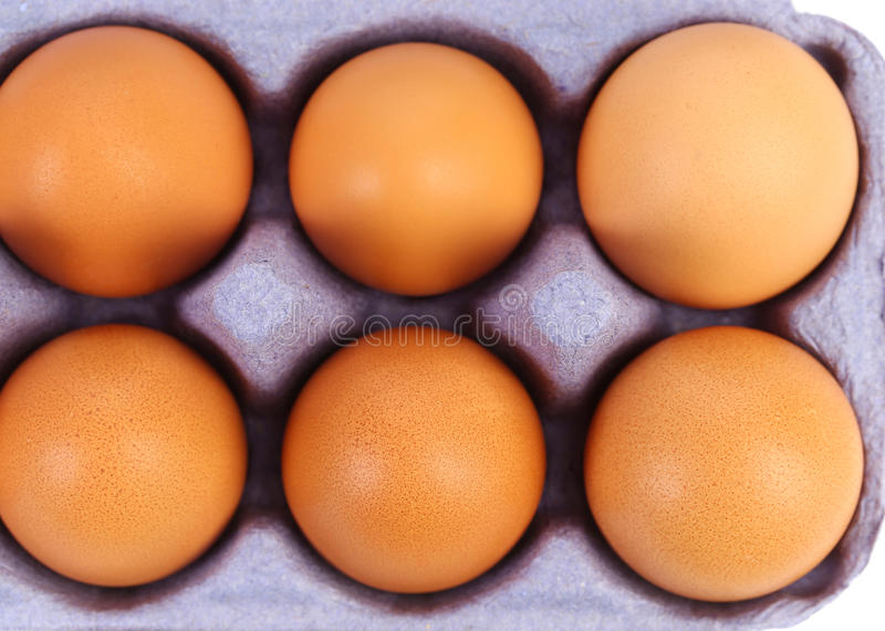 Uova marroni del sesso. immagine stock libera da diritti