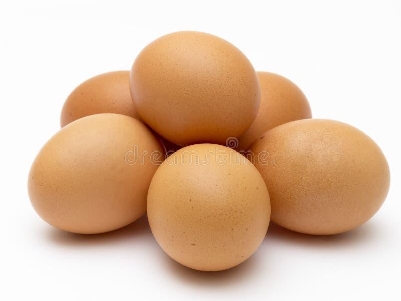 Uova marroni fresche del pollo fotografia stock