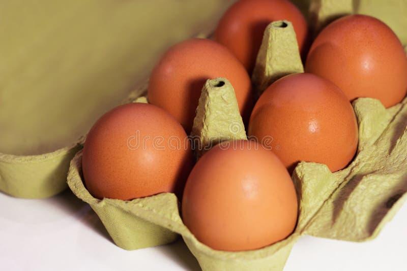 Uova marroni fresche del pollo in un cartone su un fondo bianco fotografia stock