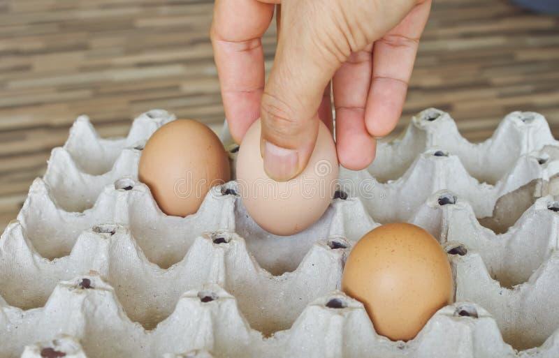 Uova nella mia cucina immagini stock libere da diritti