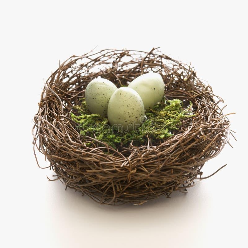 Uova in nido. fotografia stock