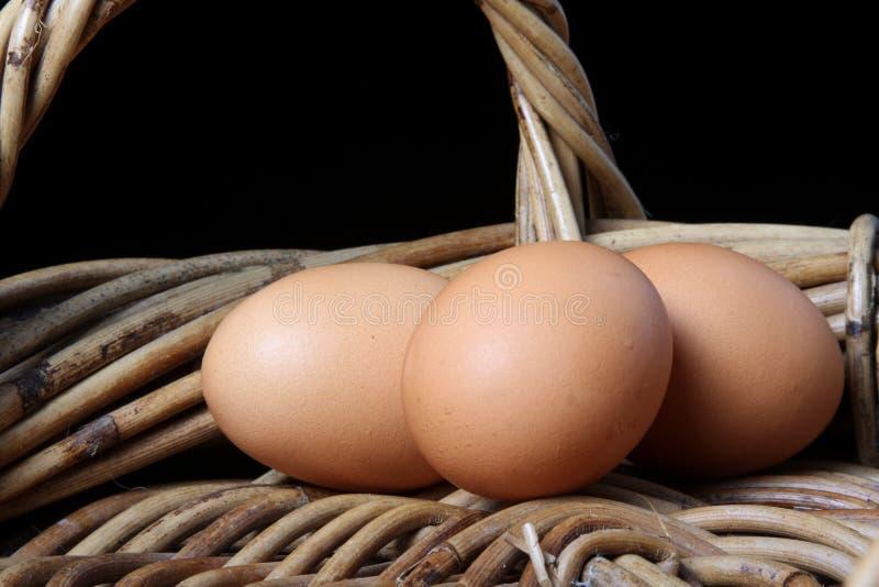 Uova in un cestino fotografie stock libere da diritti