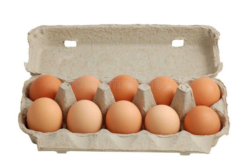 Uova in una casella isolata con il residuo della potatura meccanica-percorso incluso immagine stock