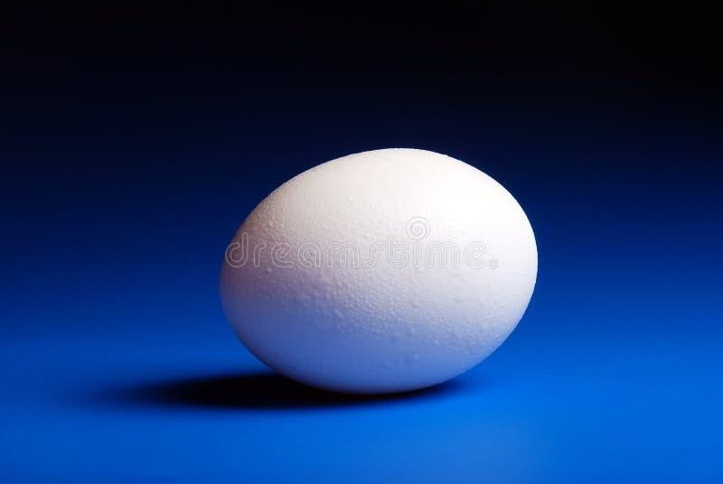 Uovo immagini stock