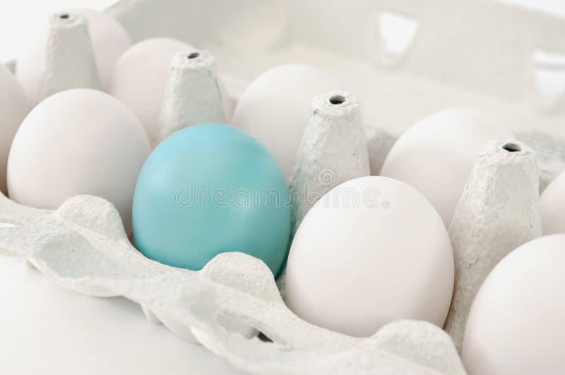 Uovo blu immagine stock