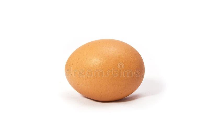 Uovo del pollo fotografia stock