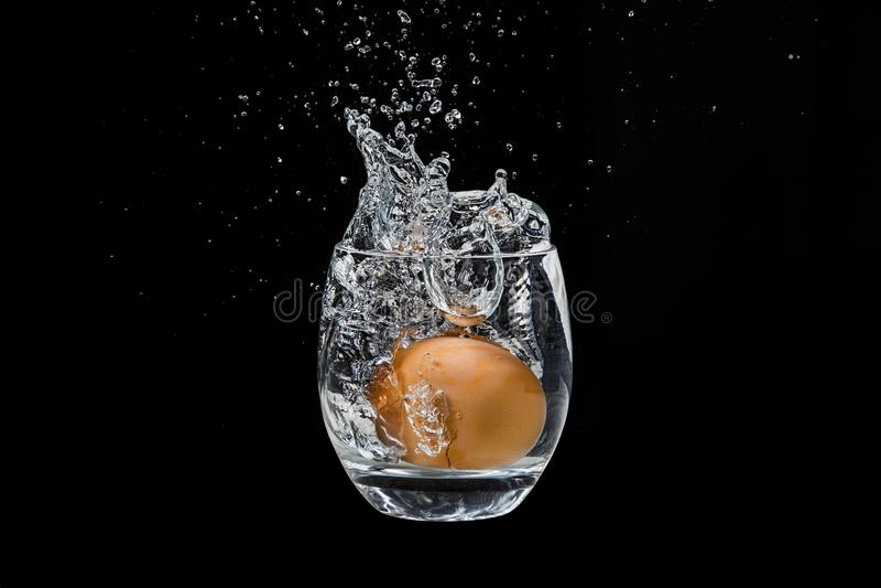 Uovo del pollo, cadente in un vetro con acqua immagini stock libere da diritti