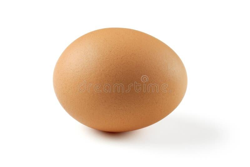 Uovo di Brown immagini stock libere da diritti