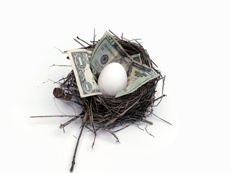 Uovo di nido fotografia stock libera da diritti