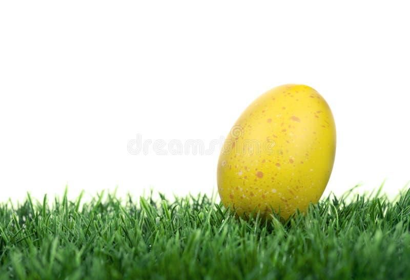 Uovo di Pasqua immagine stock