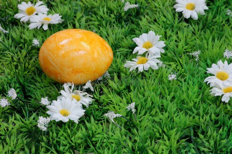 Uovo di Pasqua Giallo fotografie stock libere da diritti
