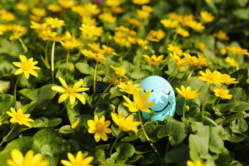 Uovo di Pasqua nascosto in un prato del fiore Caccia di tradizione e cercare le uova fotografie stock libere da diritti