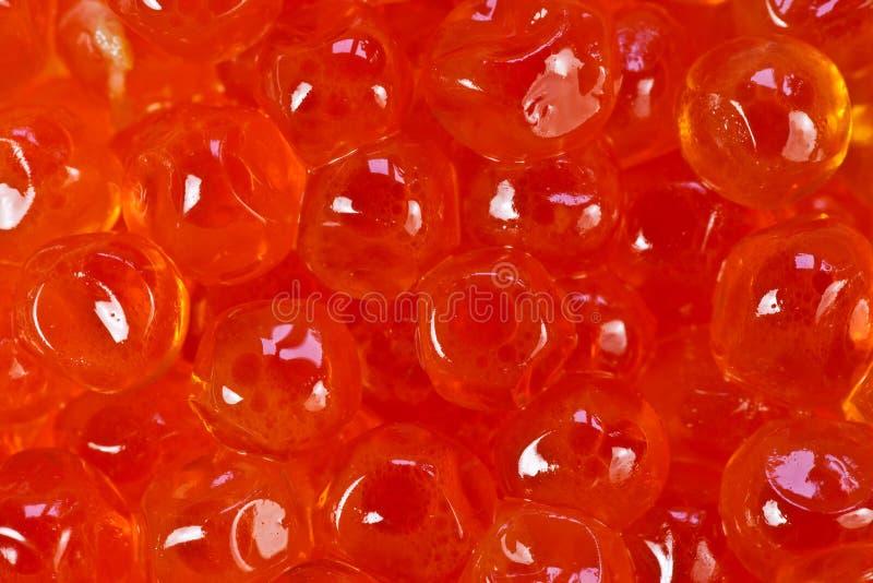Uovo di pesce rosse dei salmoni del caviale fotografia stock libera da diritti