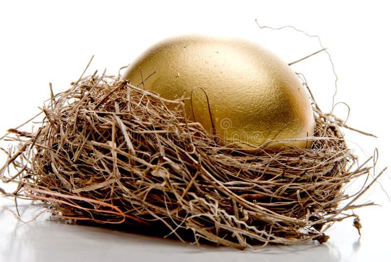 Uovo dorato immagine stock libera da diritti