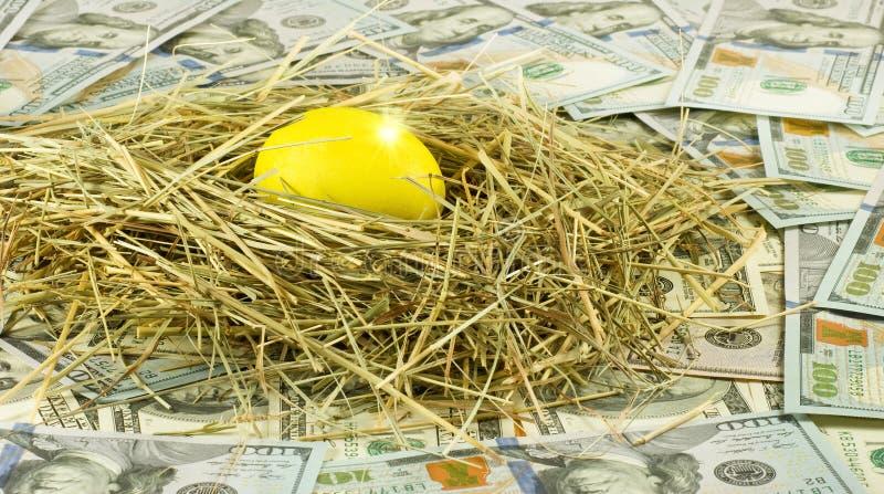 uovo dorato in nido sul fondo dei soldi immagine stock