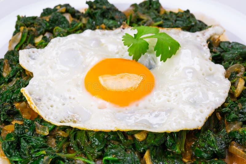 Uovo fritto su spinaci fotografia stock libera da diritti