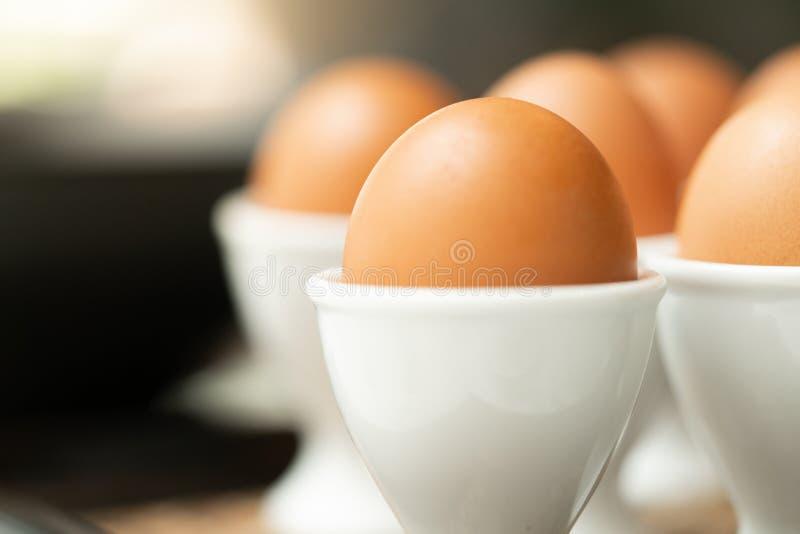 Uovo sodo alto vicino in portauovo fotografie stock libere da diritti