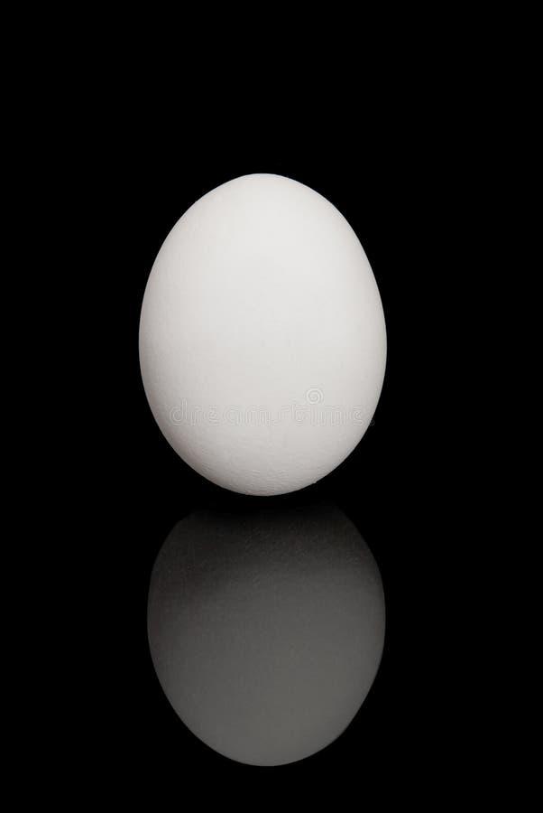 Uovo sul nero fotografia stock libera da diritti