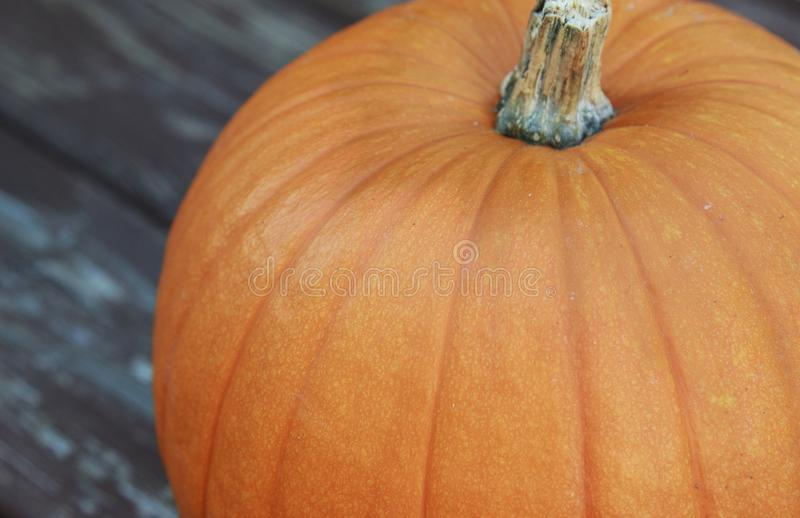 Up close view of a large Orange Pumpkin stock photo