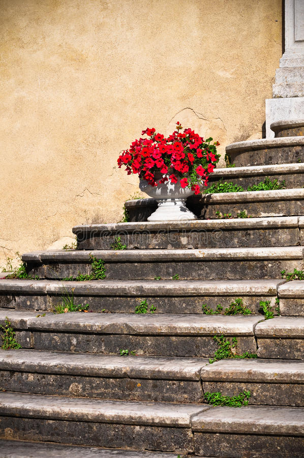 Download Up Staircase Royalty Free Stock Photography - Image: 26033697