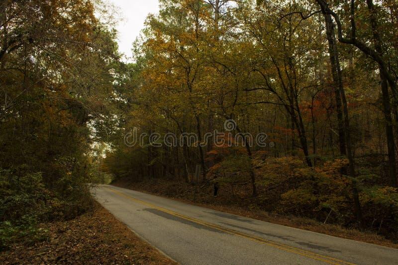 Upadek na County Road zdjęcia stock