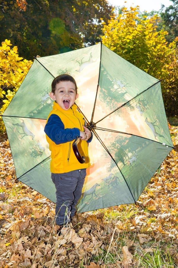 upadek Urocza berbeć chłopiec dwa roku z parasolem w jesieni obraz royalty free