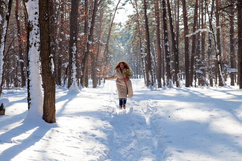 Upbeat charming woman in warm coat walking through snowy forest stock photos