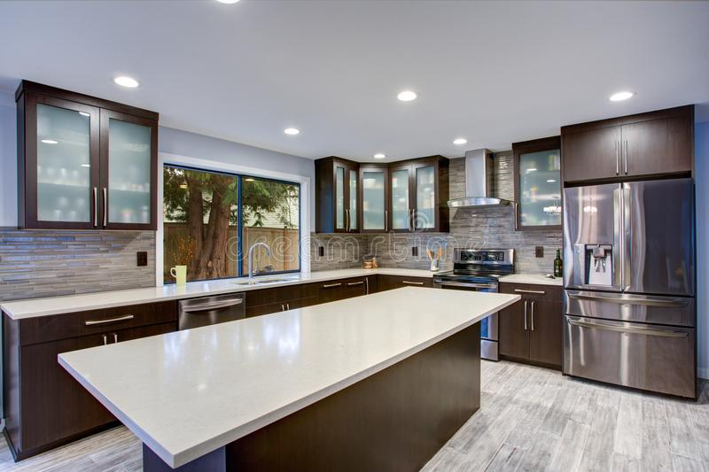 Updated contemporary kitchen room interior in white and dark tones. stock photography
