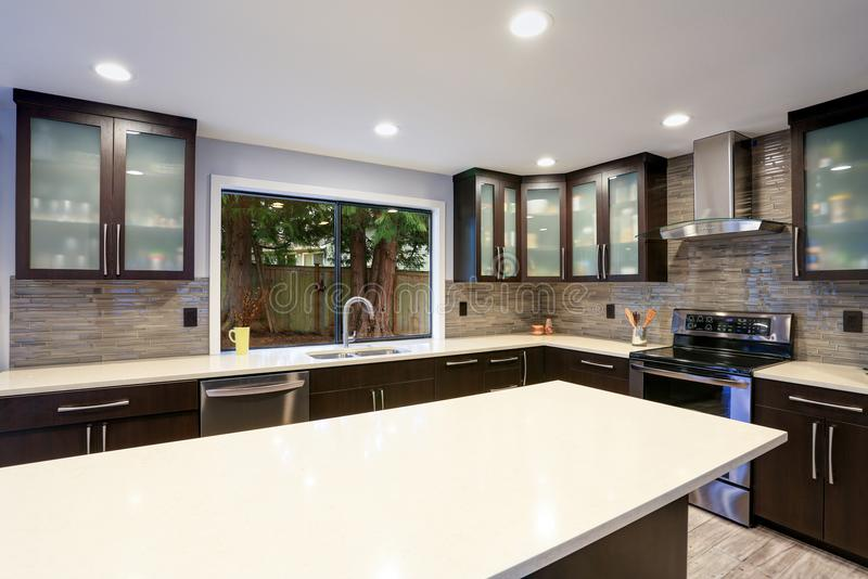 Updated contemporary kitchen room interior in white and dark tones. royalty free stock images