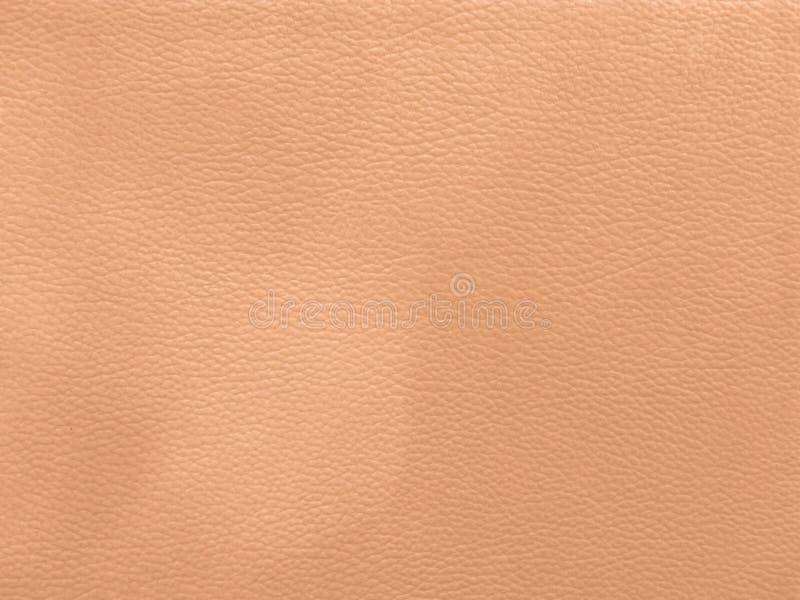 upholstery för bakgrundslädermodell yttersida closeup, kläder, w arkivfoton