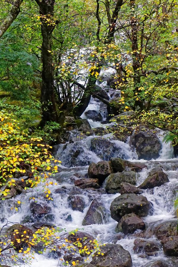 Upper Falls, Glen Nevis in Autumn royalty free stock photography