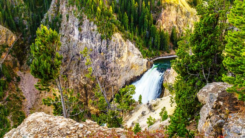 The Upper Falls in the Grand Canyon of the Yellowstone River in Yellowstone National Park in Wyoming, USA stock photography