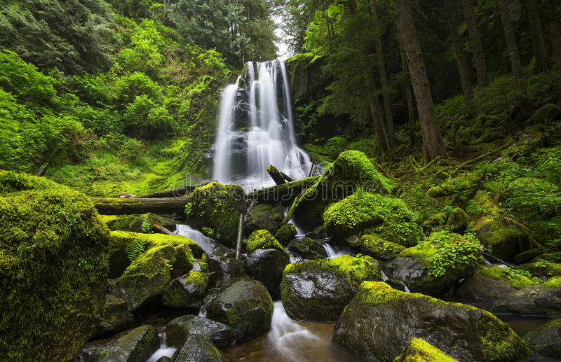 Upper Kentucky Falls, Oregon royalty free stock images