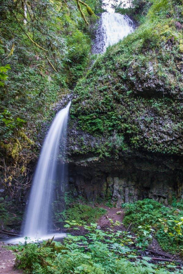 Free Upper Latourell Falls Royalty Free Stock Photography - 75773647