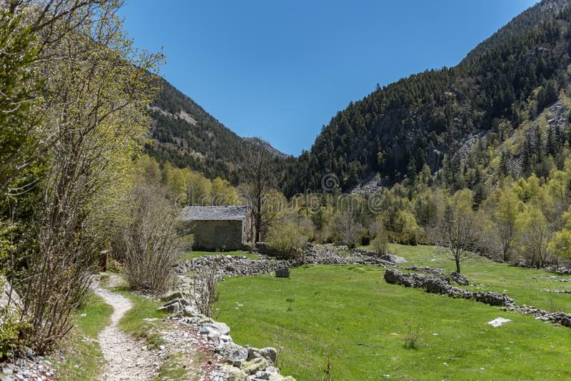 In the upper part of the Vall-de-Madriu-Perafita-Claror there are the high-altitude valleys with the mountain rivers, the alpine m. Eadows and the forests. Font stock image