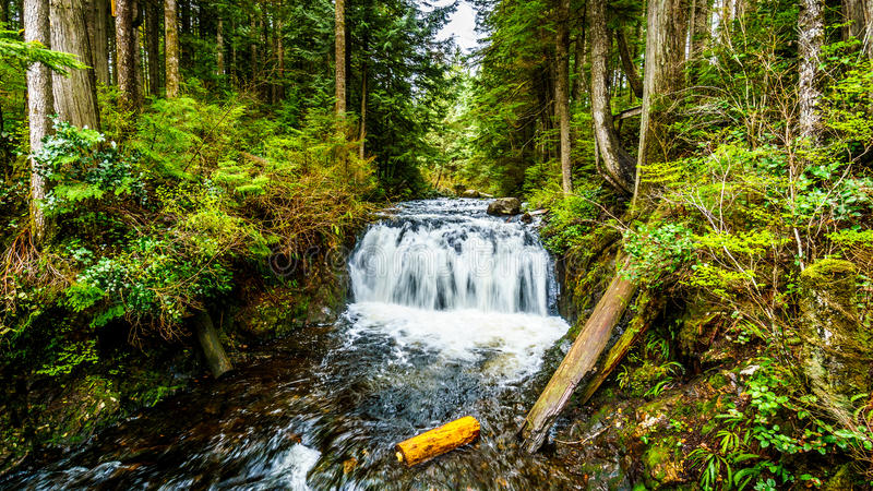 Upper Rolley Falls in the temperate rain forest of Rolley Lake Provincial Park stock image